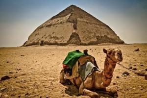 EGIPTO 0120120901_3630
